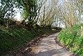 Vicarage Lane (2) - geograph.org.uk - 1253063.jpg