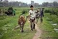 Vietnam & Cambodia (3337586936).jpg