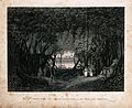 View from inside an enormous banyan tree (Ficus benghalensis Wellcome V0043041.jpg