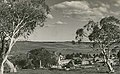 View of Adaminaby NSW.jpg