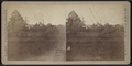 View of a field, by Camp, D. S. (Daniel S.).png