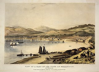 View of a part of the town of Wellington, New Zealand