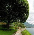 Villa Balbianello 3694 Mercator 6.jpg