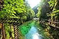 Vintgar Gorge (35680079901).jpg