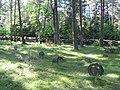 Vormsi kalmistu 02.jpg
