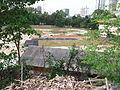WHZhang's Bukit Bintang (Field 3).jpg