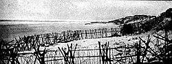 WW1 Western Front at Nieuport.jpg