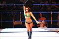 WWE Diva Layla.jpg