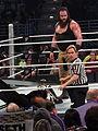 WWE Smackdown IMG 0931 (24345299156).jpg