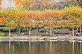 Wade Lagoon (22535334946).jpg
