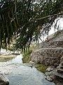 Wadi David.jpg