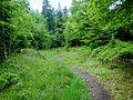 Wanderweg - panoramio (97).jpg