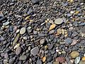 Water gravel on the coast IMG 6655.jpg