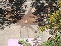 Watermelon drop, splatter, UCSD.jpg