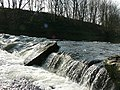 Weir on River Aire by Rein Road - geograph.org.uk - 377993.jpg