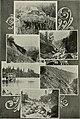Western field (1905) (14578259678).jpg