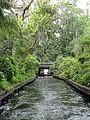 Winter park canal.jpg
