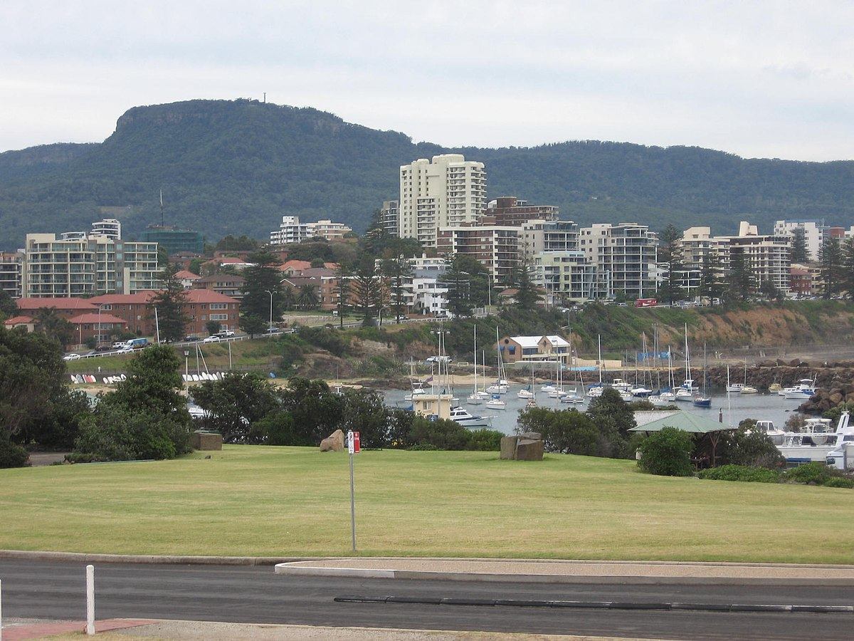 Wollongong City Council Buy Back Flood Properties