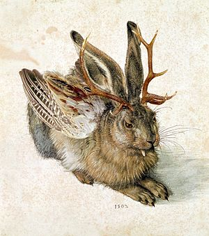 Skvader - Wolpertinger edited from a drawing of a hare by Albrecht Dürer.