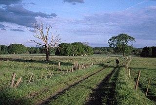 Woolsington Human settlement in England