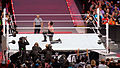 WrestleMania 31 2015-03-29 19-26-08 ILCE-6000 9557 DxO (18116472865).jpg