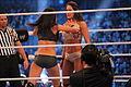 WrestleMania XXX IMG 5112 (13771365024).jpg