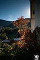 Zermatt (5065276344).jpg