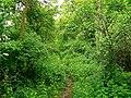 'Public path' near Driffield - geograph.org.uk - 440502.jpg