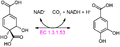 (3S,4R)-3,4-dihydroxycyclohexa-1,5-diene-1,4-dicarboxylate dehydrogenase reaction.PNG
