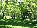 (Ms)پارک ملت - panoramio.jpg