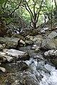 Το ποτάμι στο Πανοχώρι.jpg