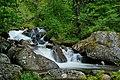 Владайската река - Витоша.jpg