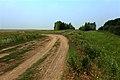 Дорога на поселок Маячный - panoramio.jpg