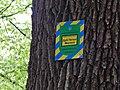 Дуб Петра Могили (Голосієво), природоохоронний знак.jpg