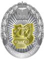Заслуженный деятель искусств Псковской области .png