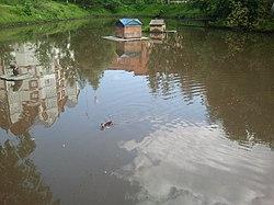 Игуменское озеро.jpg