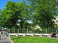 Литейный 56, сад и ограда.jpg