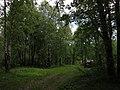 На берегу Морозовского пруда - panoramio.jpg