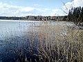 Озеро - panoramio (399).jpg