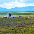 Район хребта Янганапэ, Ямал - panoramio (7).jpg