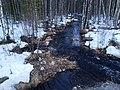 Река Капустная 1.jpg