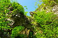 Руїни замку, Хуст 03.JPG