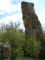 Руїни замку в с. Тайкури (ракурс 2).JPG