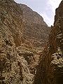 ارتفاعات چشمه تامهر - panoramio (1).jpg