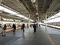二子玉川駅 - panoramio (1).jpg