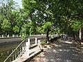 小月河岸 - Along Xiaoyue Riverside - 2012.05 - panoramio.jpg