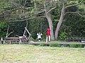 木にブランコ (15710016709).jpg