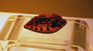 Fruit pit carving Chinese folk handicraft