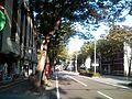 県庁通り2009年9月 - panoramio.jpg