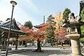 知恩院 Chion-in (11152576244).jpg